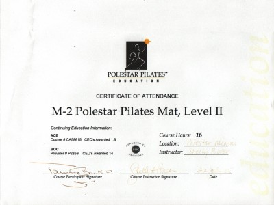 Polestar Pilates Mat, Level II